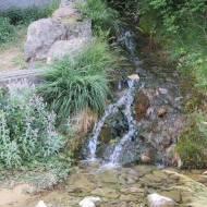IMG_4567-Santa-Elena.-La-Gloriosa