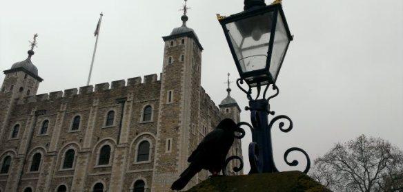 cuervos-torre-de-londres