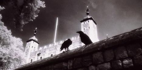 torre-cuervos-e1351244434349