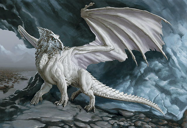 20080502_108560_0ertu4y45yt9dragon-blanco1