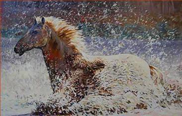 caballo-cruzando-el-rio