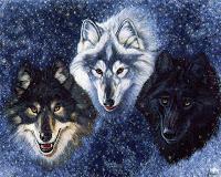 los tres lobos
