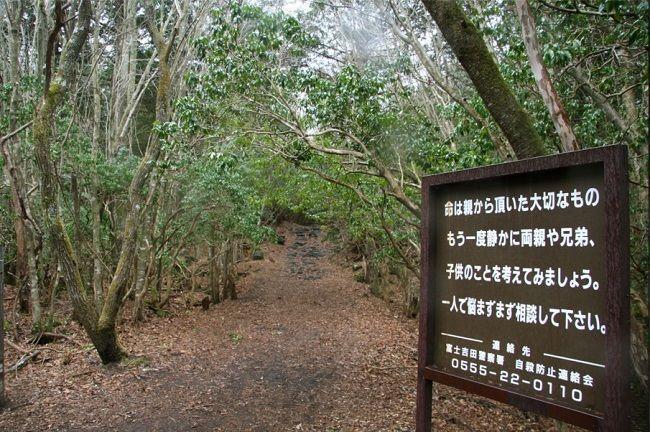 Aokigahara.-El-bosque-de-los-suicidas.-Japón.-Carteles.