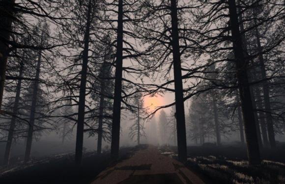bosque-tenebroso-1